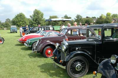 A fine display of vintage cars